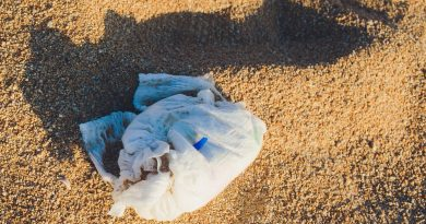 Vanuatu to ban disposable nappies in plastics crackdown: 'We had no choice'