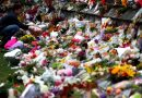 Australian family of suspected NZ mosque gunman devastated for victims