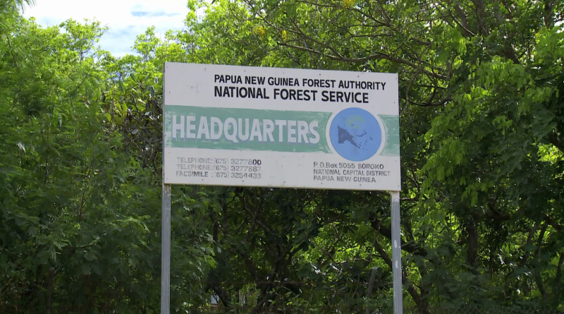 PNGFA Celebrates International Day of Forests