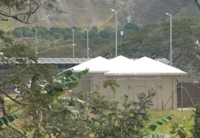 PNG Immigration and Citizenship Authority Detains 50
